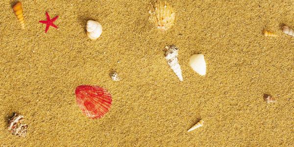 Клеевой пробковый пол Sandstrand - купить