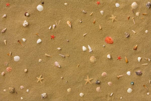Клеевой пробковый пол Sandstrand
