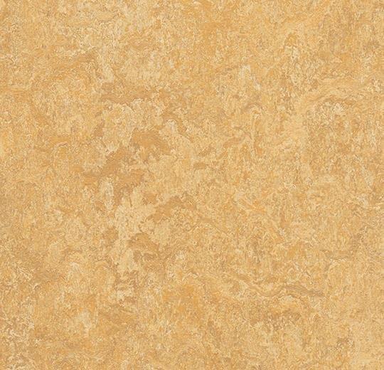 Натуральный линолеум 3173 van gogh (Forbo Marmoleum Real), м²