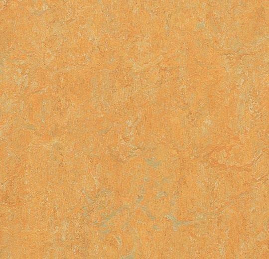 Натуральный линолеум 3847 golden saffron (Forbo Marmoleum Real), м²