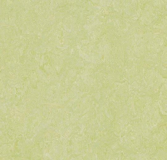 Натуральный линолеум 3881 green wellness (Forbo Marmoleum Real), м²