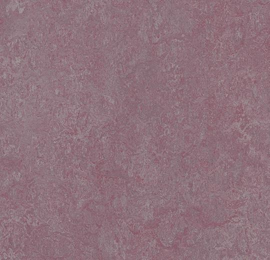 Натуральный линолеум 3272 plum (Forbo Marmoleum Real), м²