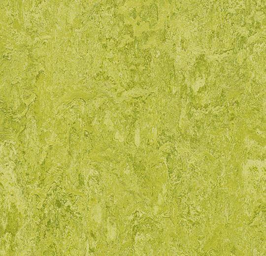 Натуральный линолеум 3224 chartreuse (Forbo Marmoleum Real), м²