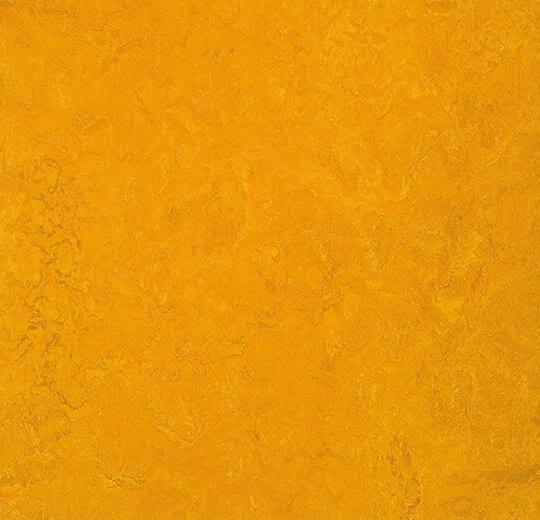 Натуральный линолеум 3125 golden sunset (Forbo Marmoleum Fresco), м²