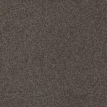 Ковровая плитка Gleam-894