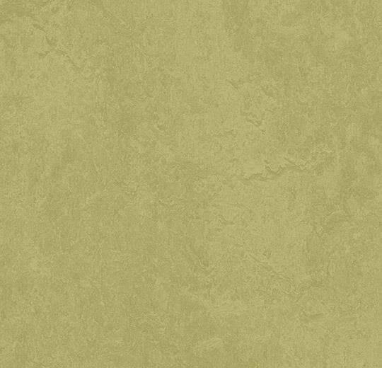 Натуральный линолеум 3265 avocado (Forbo Marmoleum Fresco), м²