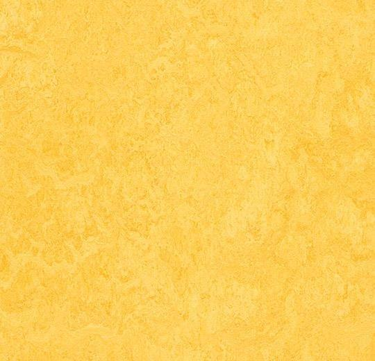 Натуральный линолеум 3251 lemon zest (Forbo Marmoleum Fresco), м²