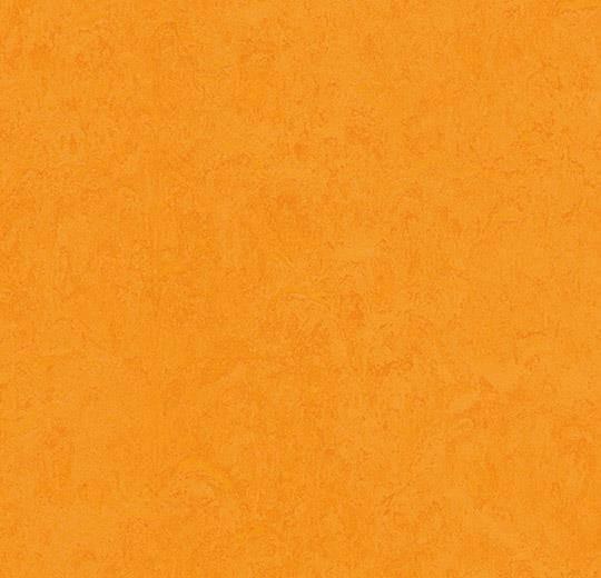 Натуральный линолеум 3262 marigold (Forbo Marmoleum Fresco), м²