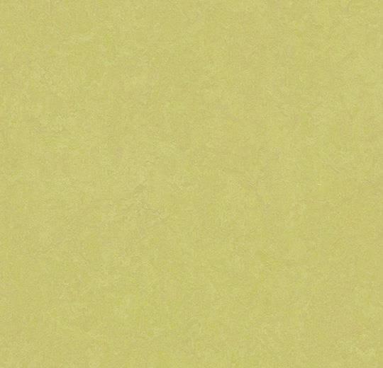 Натуральный линолеум 3885 spring buds (Forbo Marmoleum Fresco), м²