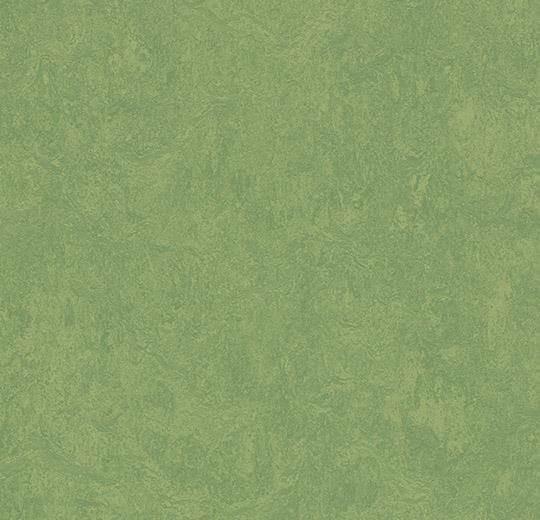 Натуральный линолеум 3260 leaf (Forbo Marmoleum Fresco), м²