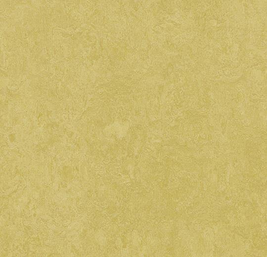 Натуральный линолеум 3259 mustard (Forbo Marmoleum Fresco), м²