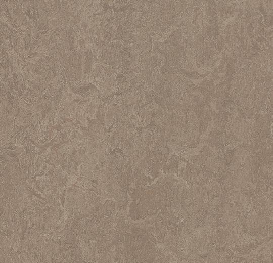 Натуральный линолеум 3246 shrike (Forbo Marmoleum Fresco), м²