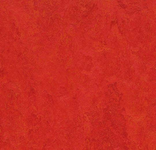 Натуральный линолеум 3131 scarlet (Forbo Marmoleum Fresco), м²