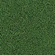 Линолеум Bingo Grass-025 (IVC)