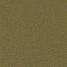 Ковровая плитка Millennium Nxtgen 210 (Modulyss (Domo))