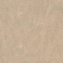 Линолеум Marmoleum Real 3232 (Forbo)
