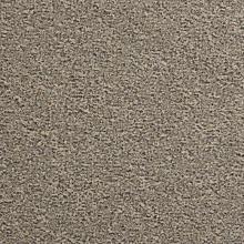 Ковровая плитка Eco100 C / L 817 (Modulyss (Domo))